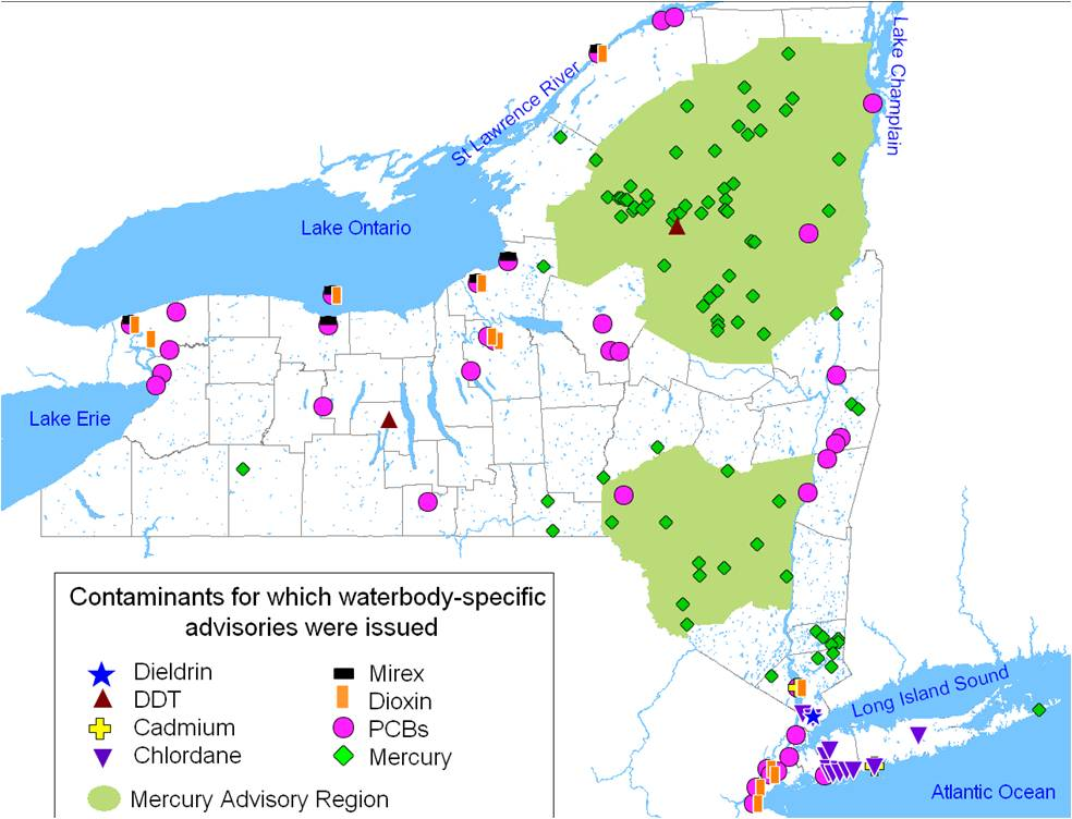 NYS map (1)