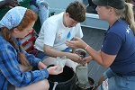 Students Examine Microplastics Photo by Michelle Gluck