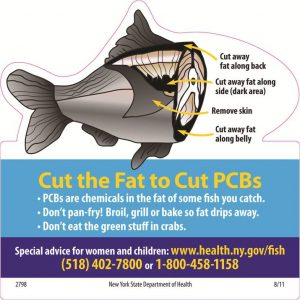 Cut the fat graphic