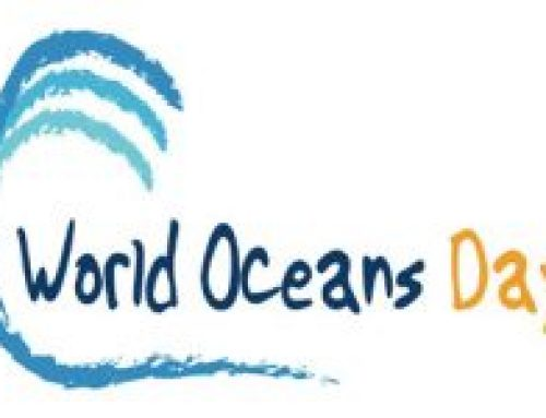 Hudson River Sloop Clearwater Hosts Clean Water Forum in Celebration of World Oceans Day