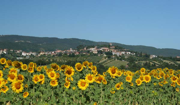 A view of the Italian countryside with sunflowers in the foreground and a village in the background, rising into hills with a brilliantly blue sky above.