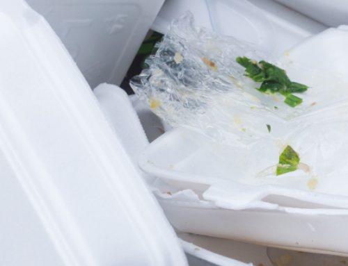 NY Governor Proposes Styrofoam Packaging Ban