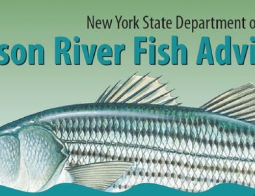 Fish Advisory: March 2021